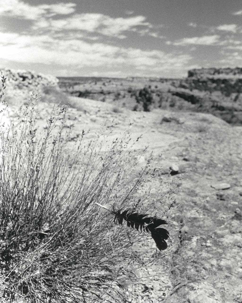 KWIRA (Tarahumara) #162 ©Oskar Landi . Black and white-mountains, black feather