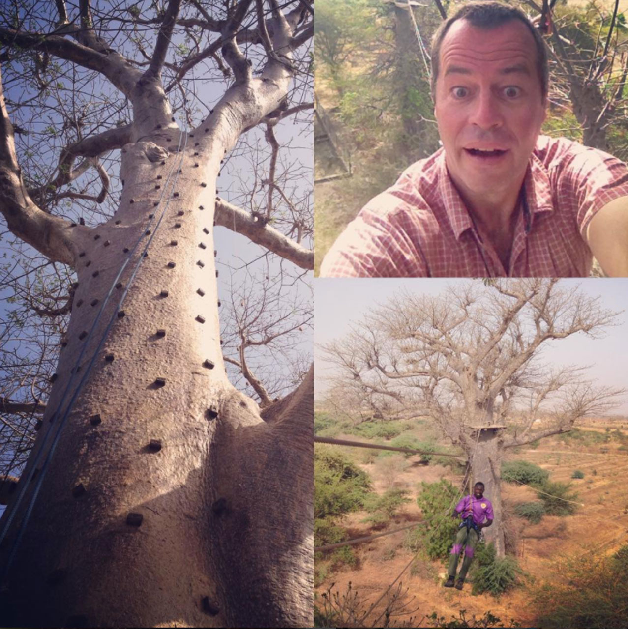 @simon.fenton.92I 'made it to the top' Accrobaobab, Senegal - posted by Simon on his Instagram page 26/5/2017@simon.fenton.92I 'made it to the top' Accrobaobab, Senegal - posted by Simon on his Instagram page 26/5/2017