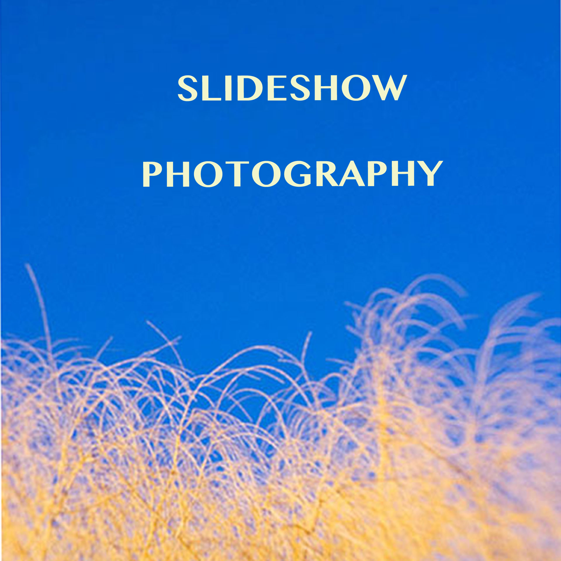 PHOTOGRAPHY SLIDESHOW IMAGE