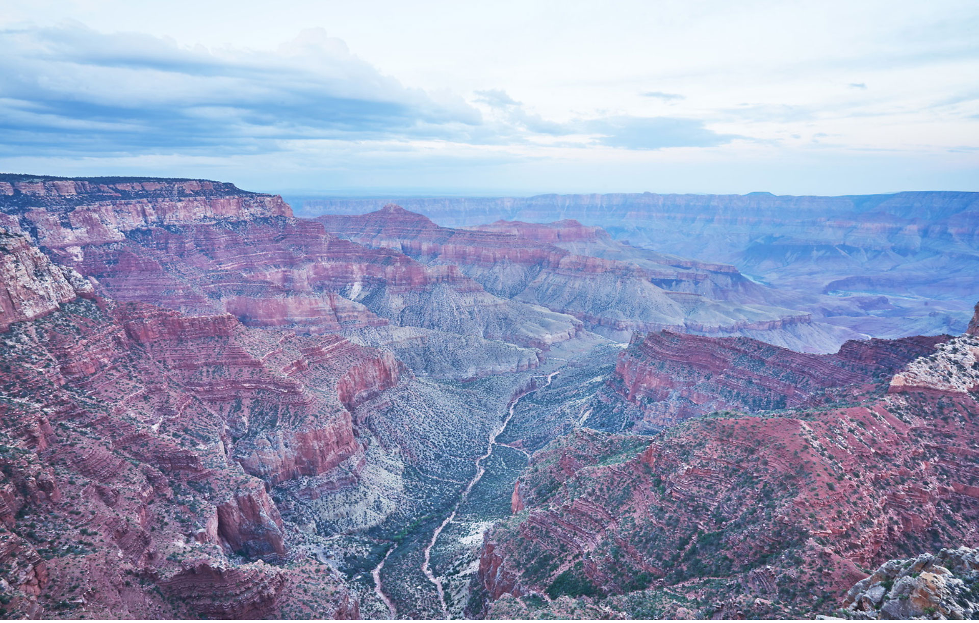 ALL 50 STATES - Cape Royal, Grand Canyon North Rim©Tony Gale photography